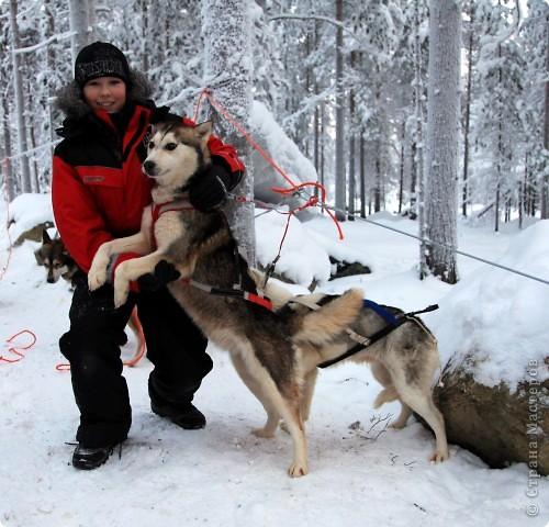 Поездка в Лапландию часть2 фото 40