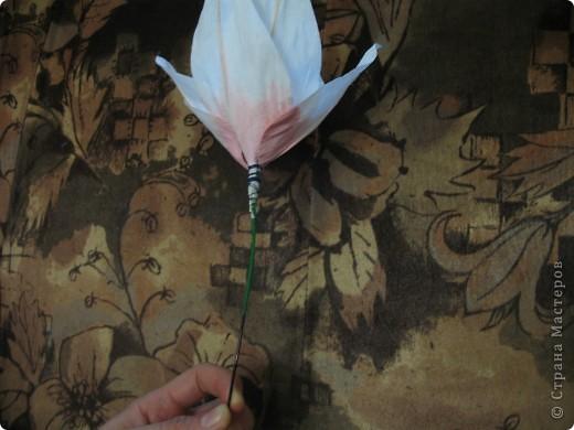 Для создания лилии (три раскрытых цветка и бутон) необходимо нарезать 18 проволочек 0,2-0,3мм по 18 см. каждая фото 18