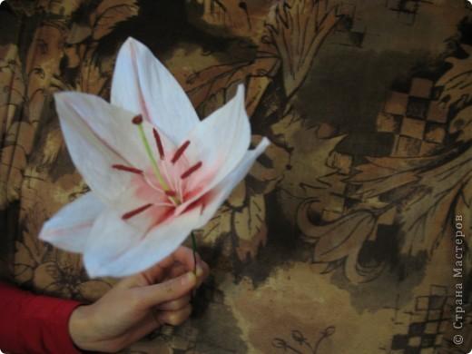 Для создания лилии (три раскрытых цветка и бутон) необходимо нарезать 18 проволочек 0,2-0,3мм по 18 см. каждая фото 19