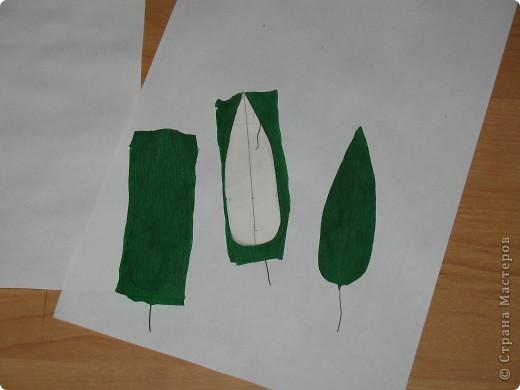 Для создания лилии (три раскрытых цветка и бутон) необходимо нарезать 18 проволочек 0,2-0,3мм по 18 см. каждая фото 22