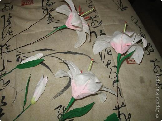 Для создания лилии (три раскрытых цветка и бутон) необходимо нарезать 18 проволочек 0,2-0,3мм по 18 см. каждая фото 24
