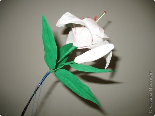 Для создания лилии (три раскрытых цветка и бутон) необходимо нарезать 18 проволочек 0,2-0,3мм по 18 см. каждая фото 26
