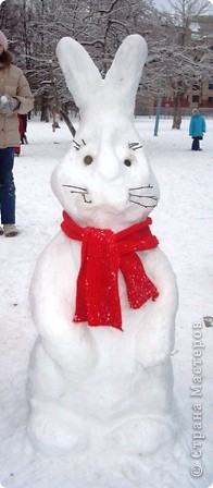 Очень крупный кролик :) фото 1