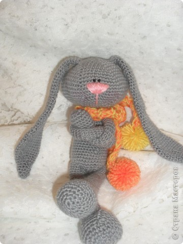 Заяц фото 2