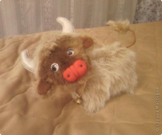 Сшила бычка в подарок.