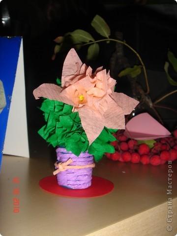Ты сегодня мне принёс...не букет из алых роз...не тюльпаны и не лилии... Кактусы, кактусы... Это образцы кактусов для всё тех же детей (5-6 лет) из нашей изостудии! Дети выполняли работу сами от и до... Как же им нравится торцевать! Итак...Торцуют все!!! Спасибо Татьяне Просняковой!!! фото 2