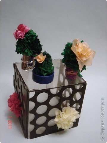 Ты сегодня мне принёс...не букет из алых роз...не тюльпаны и не лилии... Кактусы, кактусы... Это образцы кактусов для всё тех же детей (5-6 лет) из нашей изостудии! Дети выполняли работу сами от и до... Как же им нравится торцевать! Итак...Торцуют все!!! Спасибо Татьяне Просняковой!!! фото 1