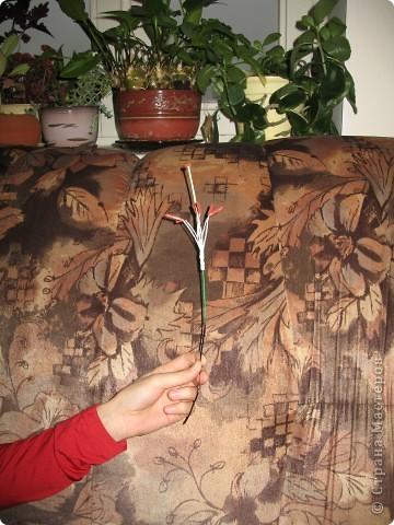 Для создания лилии (три раскрытых цветка и бутон) необходимо нарезать 18 проволочек 0,2-0,3мм по 18 см. каждая фото 16