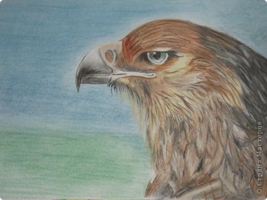 Мой гордый Орёл