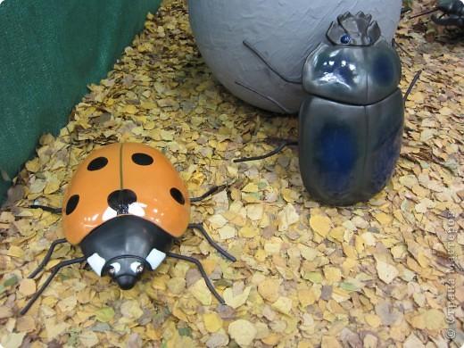 Огромные металлические жуки. фото 1