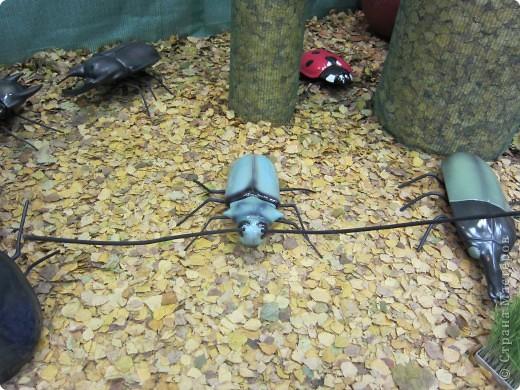 Огромные металлические жуки. фото 2