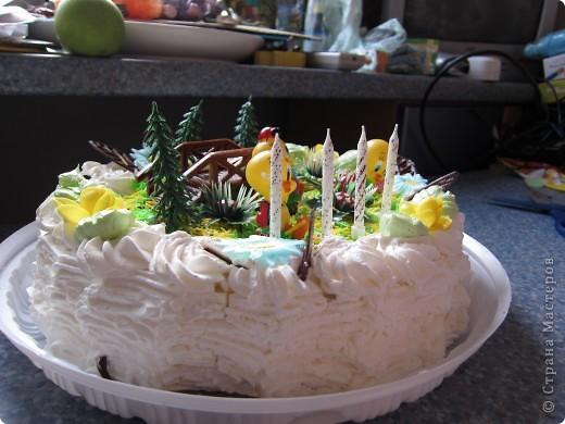 Вот такой тортик (покупной) подарила внучке на 4 года.  фото 4