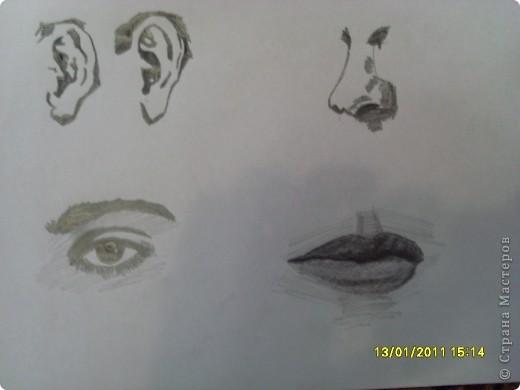 Нос, Ухо, Глаз, Губы