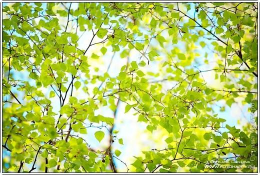 Вот такие нежно-зеленые и желто-солнечные получились у меня открытка и кусудама фото 12