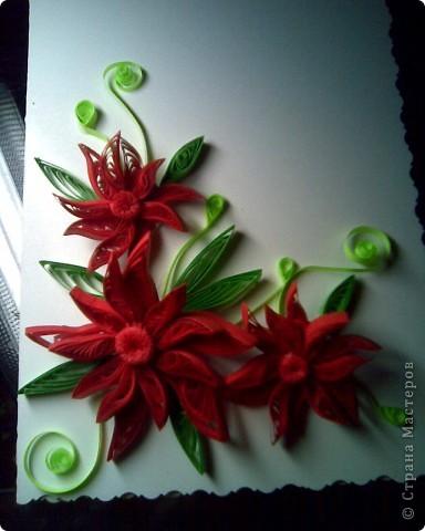 Думаю,быть этим цветам на открытке))))