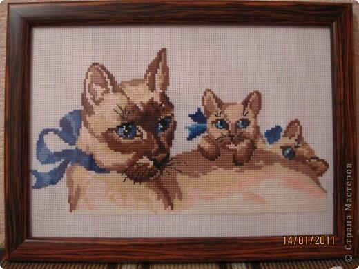 Вышивка. Любимые животинки фото 8