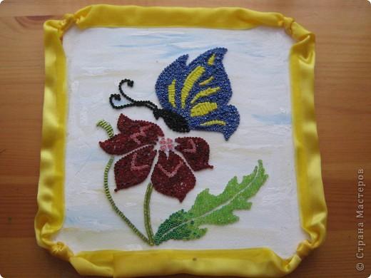 бабочка над цветком фото 1