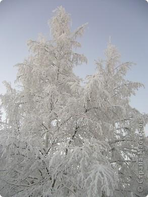 вид из моего окна влево фото 4