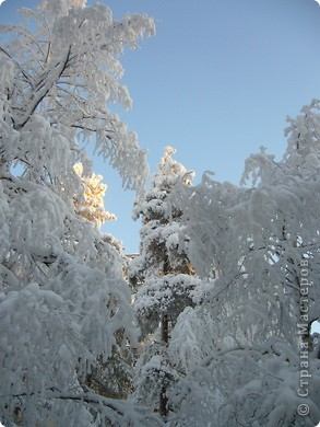 вид из моего окна влево фото 13