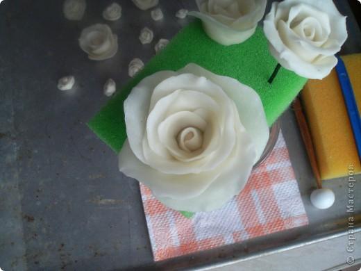 Эта роза из простого фарфора  Лепила вчера , сегодня уже сутки не трескает и становится прозрачный фото 1