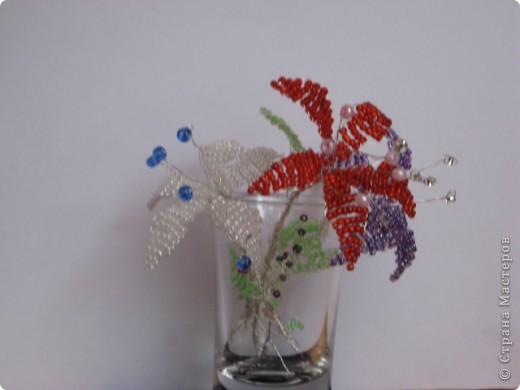 Цветы моей доченьки фото 1