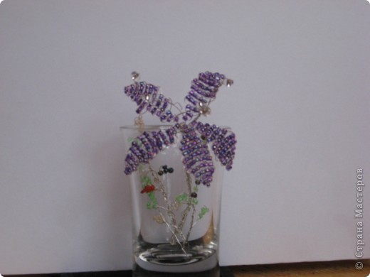 Цветы моей доченьки фото 2