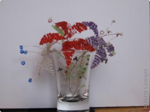 Цветы моей доченьки фото 3