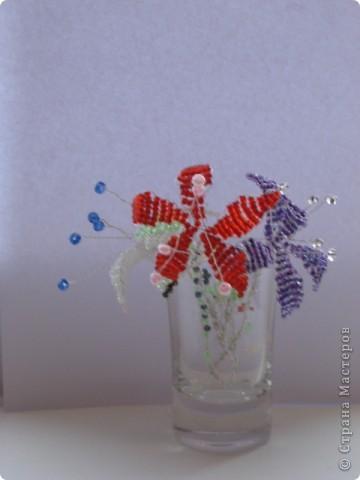 Цветы моей доченьки фото 4