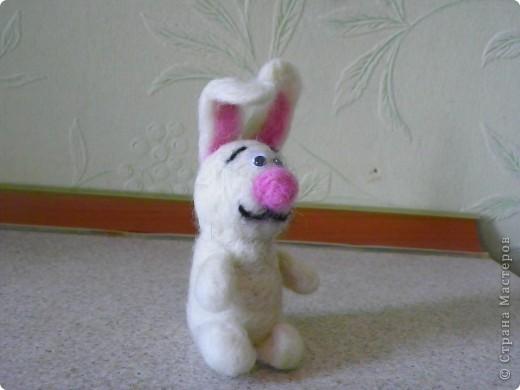 И снова...зайцы! фото 1