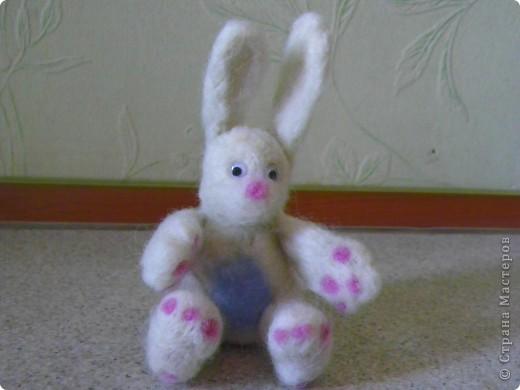И снова...зайцы! фото 3