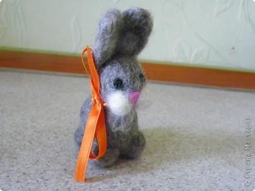 И снова...зайцы! фото 4