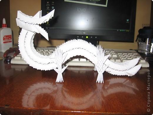 Феофан - дракон дальневосточный золотой фото 6