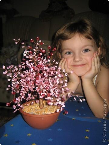 теперь и в нашем саду расцвела сакура фото 2
