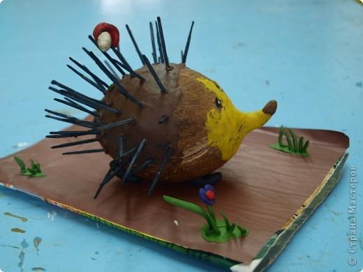 Такой замечательный ёжик получился у Ксении из кокоса. фото 3
