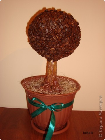 Посмотрев на сайте работы многих мастеров, решила сделать свое кофейное дерево.Спасибо Всем за прекрасную идею! фото 1