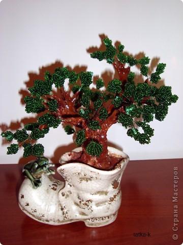 И из старого башмачка может вырасти такое дерево из бисера.  фото 1