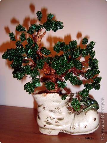 И из старого башмачка может вырасти такое дерево из бисера.  фото 2