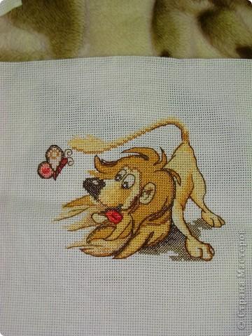 Озорной львёнок