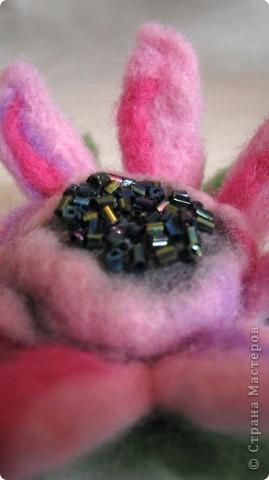 Мой первый цветочек из шерсти сделанный в технике - мокрое валяние. Когда стала делать, интузиазм мой быстро убежал)) так как ожидала, что шерсть бысто усядется. Так как я делала цветок так: взяла пластмассовый шарик, его обматала тоненько фиолетовой шерсть, поверх, тоже тоненько - ярко-розовой, а после уже нежно-розовой. Намочила в горячей мыльной воде, и стала укатывать, и ожижала, что шерсть даст усадку и плотно обхватит мой шарик. Но, она так плотно и не прилегла, как я не старалась. Помучавшись около получаса, я сполоснула что-то на подобии капли, разрезала лепестки, и поняла, что внутенние слои не свалялись! Я купила шерсть разного типа: бледно-розовая тоньше, чем шерсть ярких тонов. Может по этому так плохо сцепилось? По этому, пришлось прогуляться иголочкой, которая взяла и..... поломалась)))) Я так растроилась! ПЕРВЫЙ ОПЫТ, И ВСЕ ПОШЛО НЕ ТАК КАК Я ХОТЕЛА И ОЖИДАЛА, И КАК ПРЕДСТАВЛЯЛА! Намылила лепестки, и валяла пальцами, образовавшиеся неровности обрезала фото 1