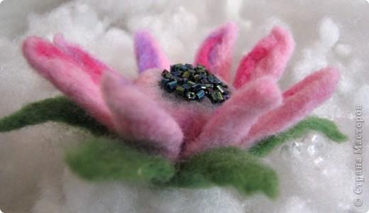 Мой первый цветочек из шерсти сделанный в технике - мокрое валяние. Когда стала делать, интузиазм мой быстро убежал)) так как ожидала, что шерсть бысто усядется. Так как я делала цветок так: взяла пластмассовый шарик, его обматала тоненько фиолетовой шерсть, поверх, тоже тоненько - ярко-розовой, а после уже нежно-розовой. Намочила в горячей мыльной воде, и стала укатывать, и ожижала, что шерсть даст усадку и плотно обхватит мой шарик. Но, она так плотно и не прилегла, как я не старалась. Помучавшись около получаса, я сполоснула что-то на подобии капли, разрезала лепестки, и поняла, что внутенние слои не свалялись! Я купила шерсть разного типа: бледно-розовая тоньше, чем шерсть ярких тонов. Может по этому так плохо сцепилось? По этому, пришлось прогуляться иголочкой, которая взяла и..... поломалась)))) Я так растроилась! ПЕРВЫЙ ОПЫТ, И ВСЕ ПОШЛО НЕ ТАК КАК Я ХОТЕЛА И ОЖИДАЛА, И КАК ПРЕДСТАВЛЯЛА! Намылила лепестки, и валяла пальцами, образовавшиеся неровности обрезала фото 2