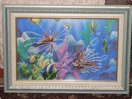 Картина панно рисунок Вышивка Частичная вышивка Подводный мир Бисер фото 2.