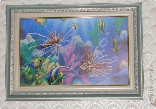 """Частичная вышивка """"Подводный мир"""" фото 1"""