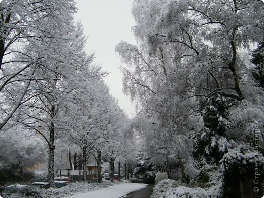 Вот таким был наш первый снег! Зима у нас началась очень рано для Германии - в ноябре. фото 1
