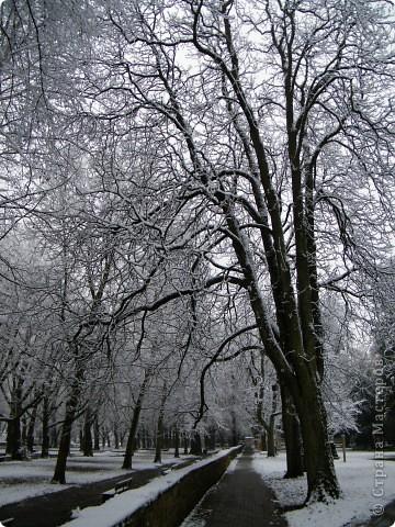 Вот таким был наш первый снег! Зима у нас началась очень рано для Германии - в ноябре. фото 3