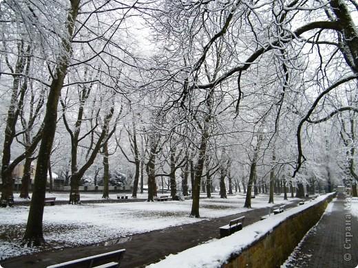 Вот таким был наш первый снег! Зима у нас началась очень рано для Германии - в ноябре. фото 4