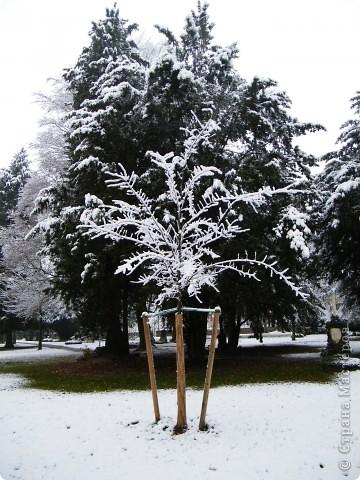 Вот таким был наш первый снег! Зима у нас началась очень рано для Германии - в ноябре. фото 5