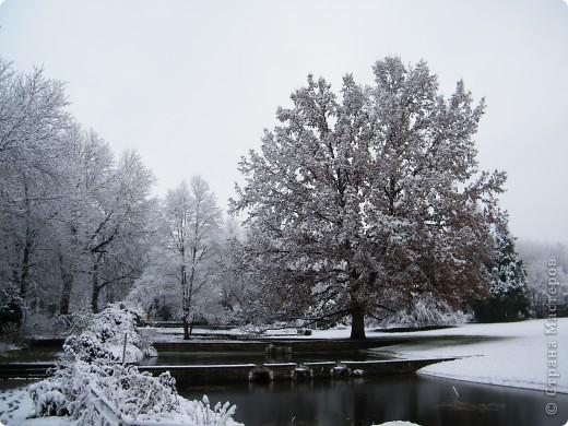 Вот таким был наш первый снег! Зима у нас началась очень рано для Германии - в ноябре. фото 8