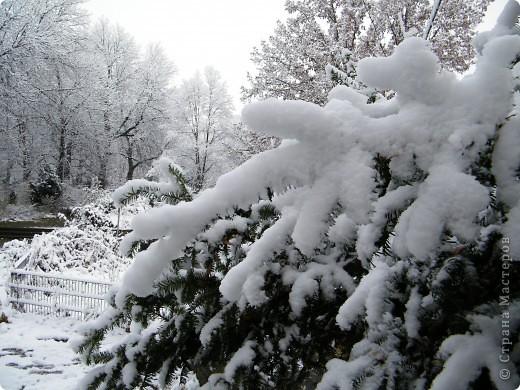 Вот таким был наш первый снег! Зима у нас началась очень рано для Германии - в ноябре. фото 9