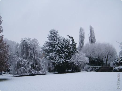 Вот таким был наш первый снег! Зима у нас началась очень рано для Германии - в ноябре. фото 13
