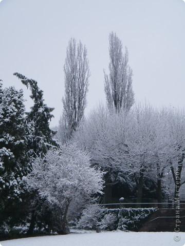 Вот таким был наш первый снег! Зима у нас началась очень рано для Германии - в ноябре. фото 12